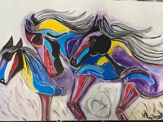 סוסים צבעוניים 3286